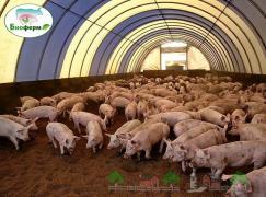 Ферментационная подстилка Биоферм