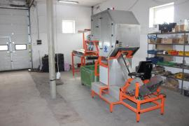 Machine for cleaning onions, cutting, sorting