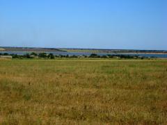 Земельный участок от хозяина, недорого. Одесская обл, с.Прилиман